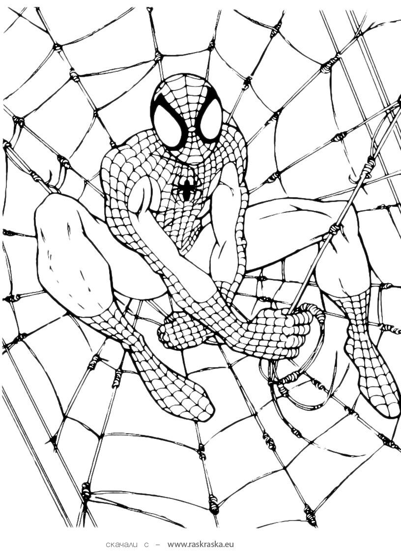 mini coloring pages spiderman - photo#7