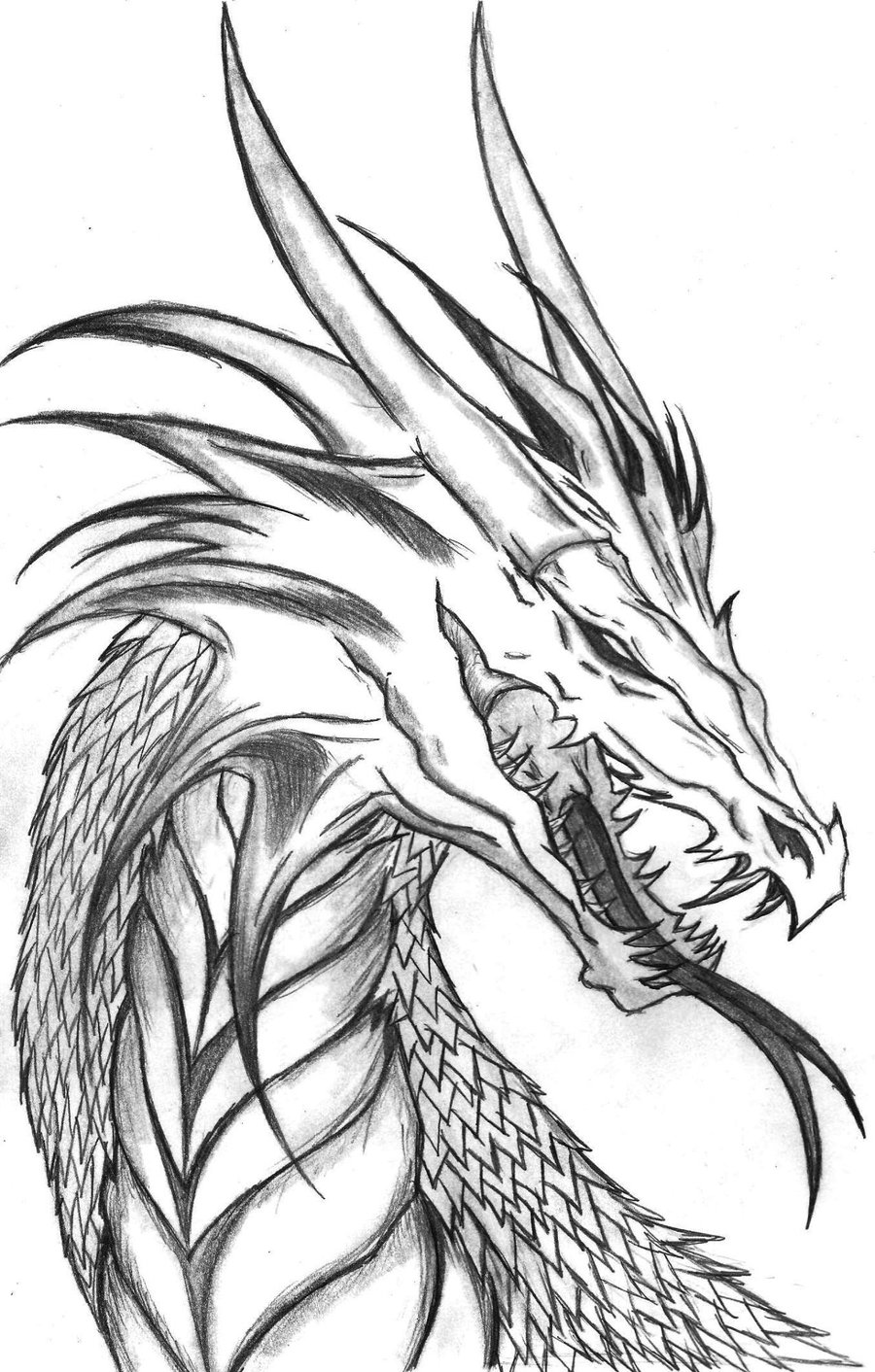 Printable coloring pages dragons - Dragon Head Coloring Page