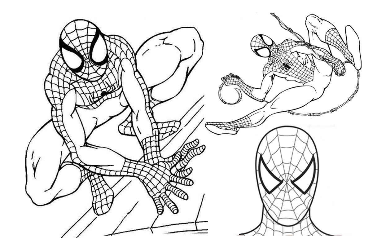 Free printable spiderman coloring pages for kids for Best coloring pages for kids