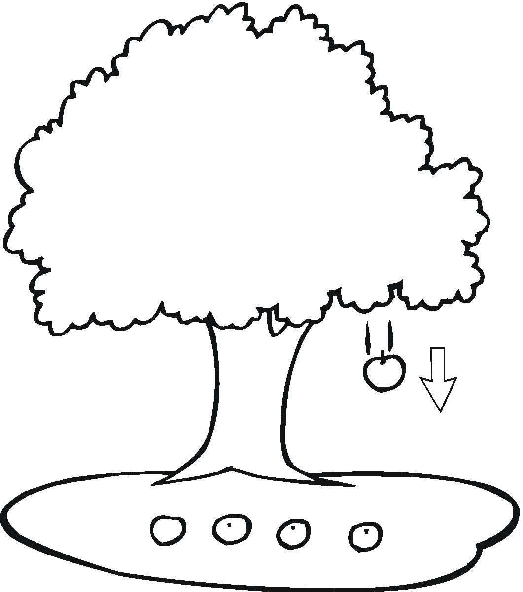 apple tree coloring pages - Apple Tree Coloring Page