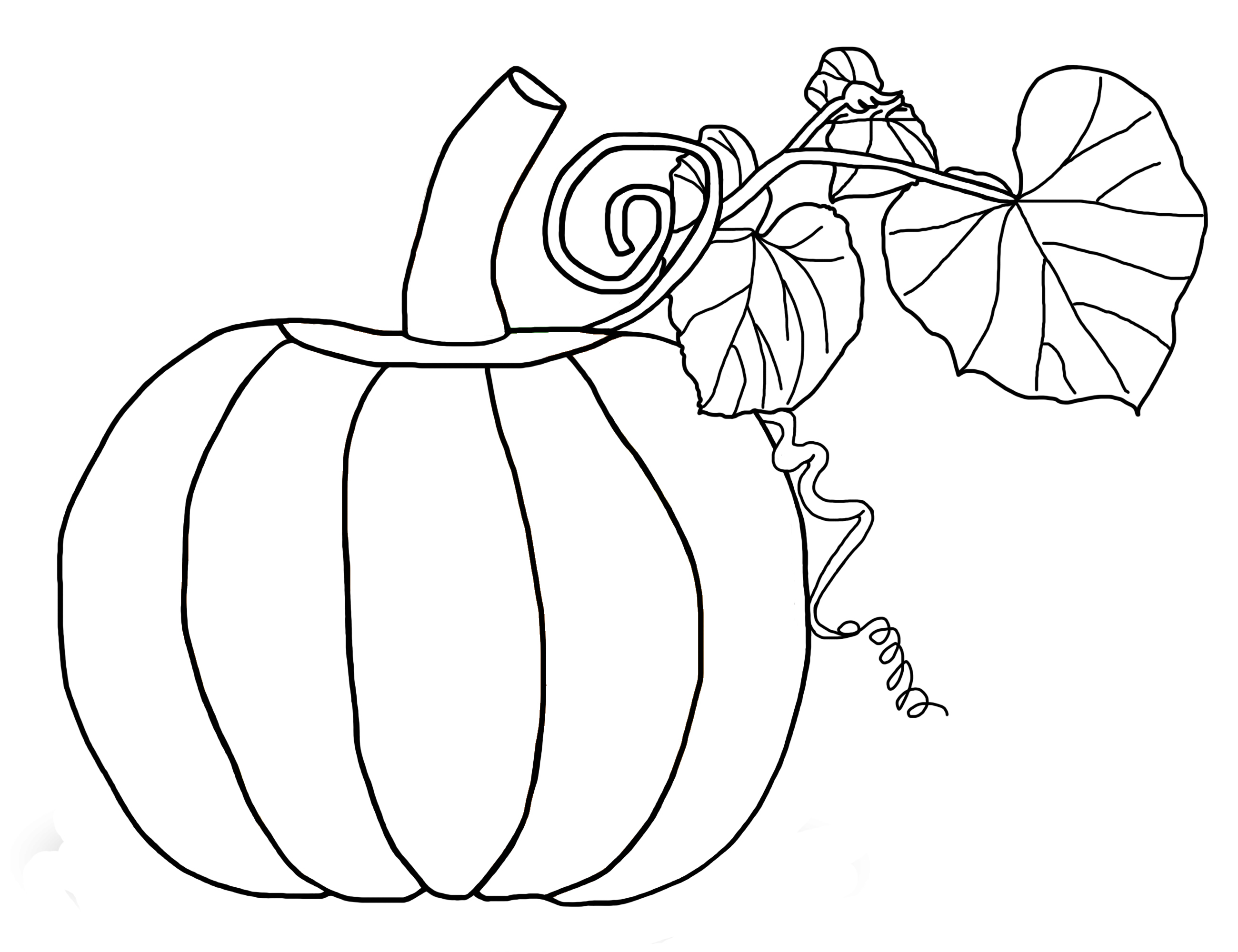 Printable coloring pages pumpkins -  Coloring Page Pumpkin