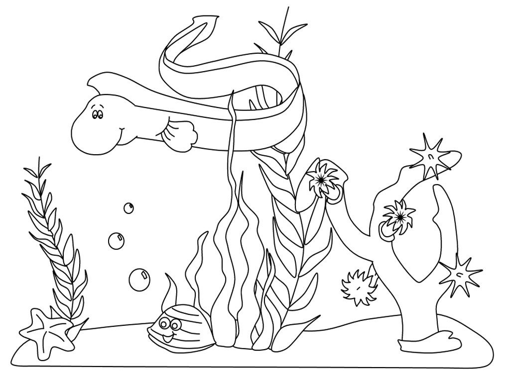 Free Coloring Pages Of Sea Creatures Under Water Sea Creatures Coloring Page