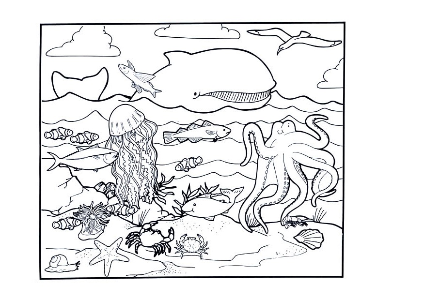 ocean life coloring pages preschool numbers - photo #45