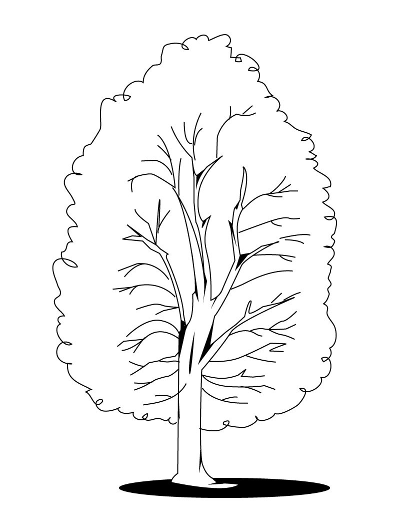 Tree In Fall Coloring Page Coloring Pages