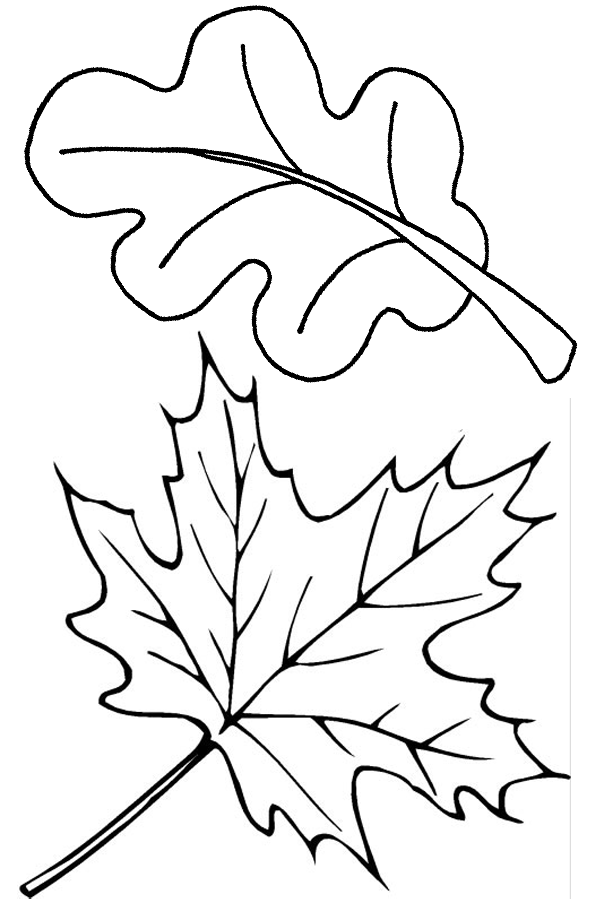 Free printable leaf coloring pages for kids for Autumn leaf template free printables