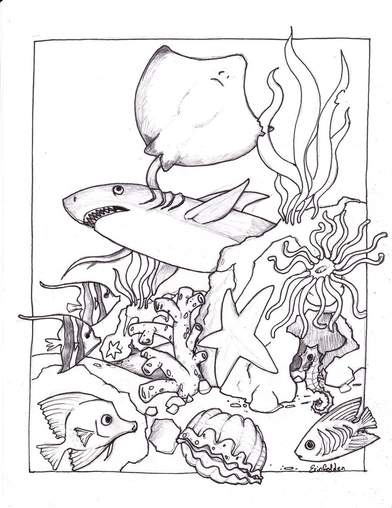 Free coloring pages realistic animals - Ocean Creatures Coloring Pages