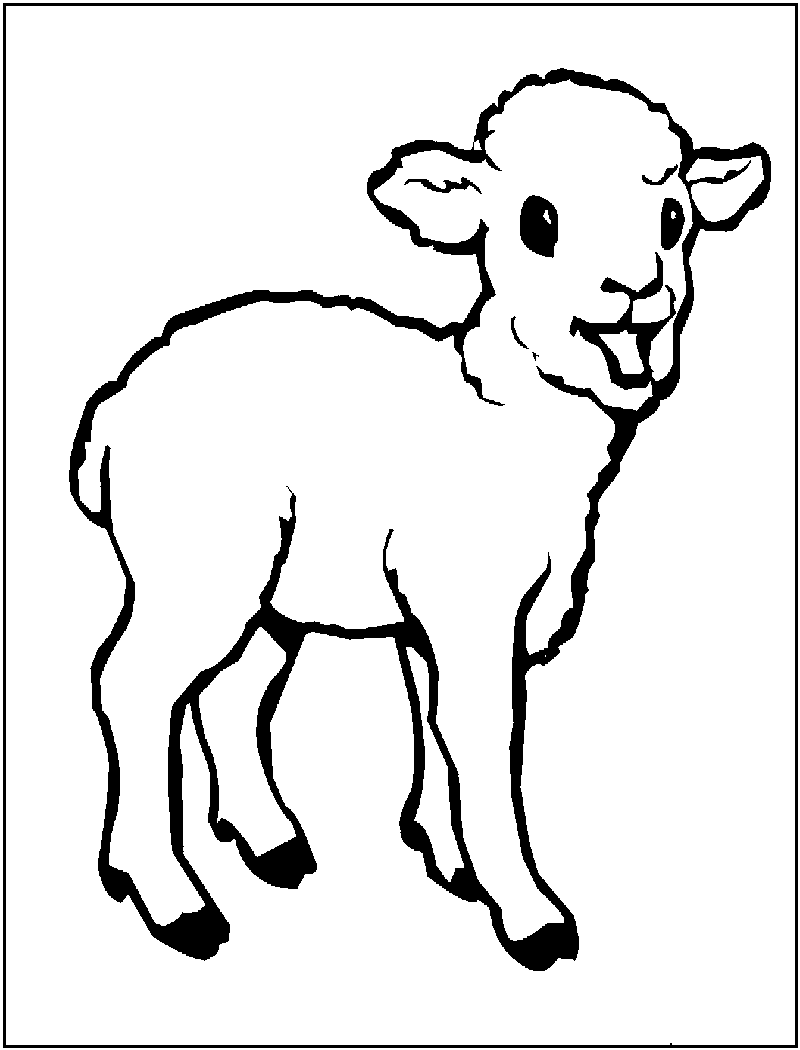 Lamb colouring pages to print - Sheep Coloring Page Print