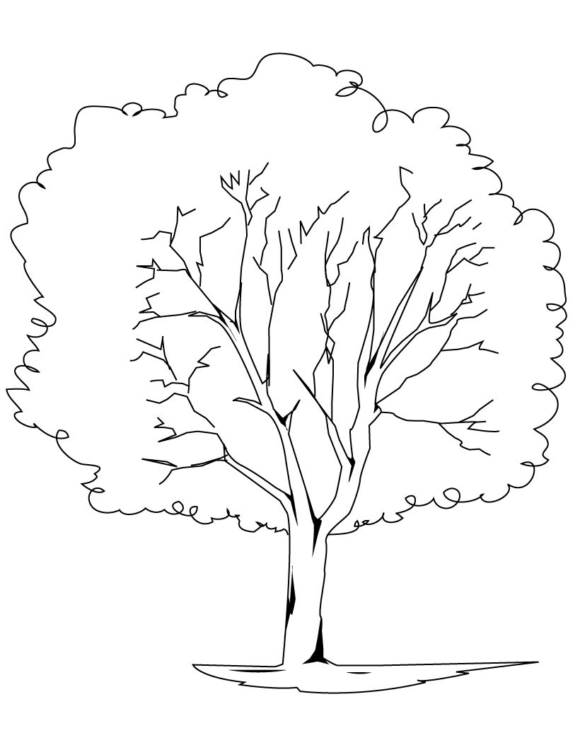 Free Printable Tree Coloring Pages For Kids Tree Coloring Page For Toddlers
