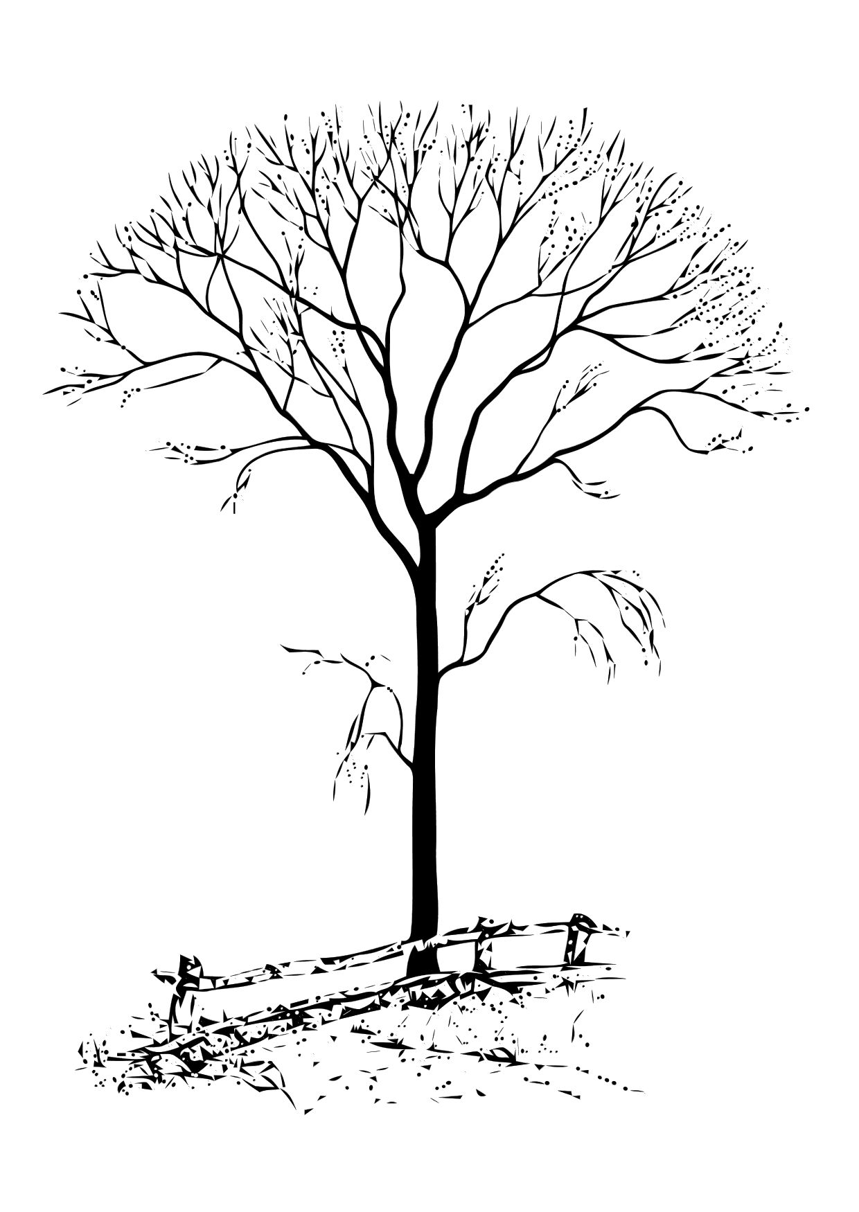 tree without leaves coloring page - Tree Leaves Coloring Page