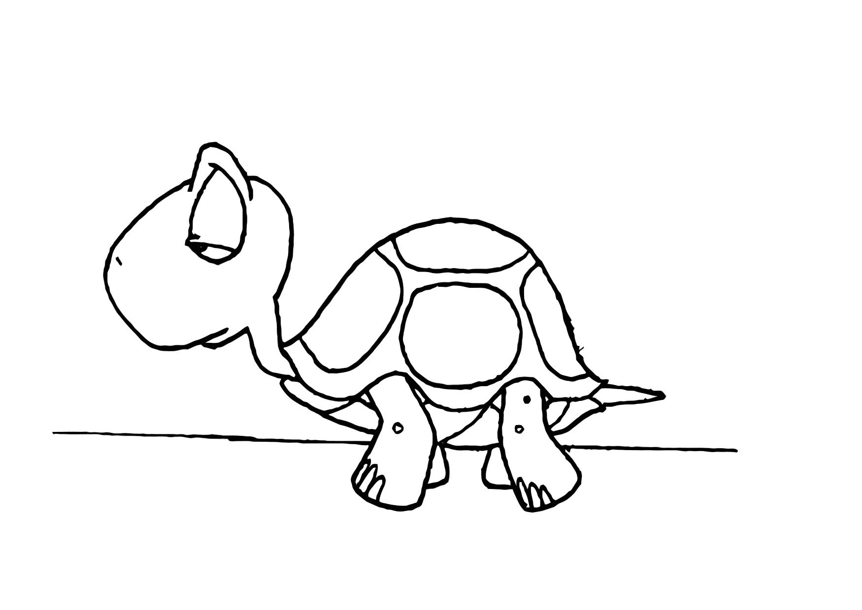 baby turtle coloring pages