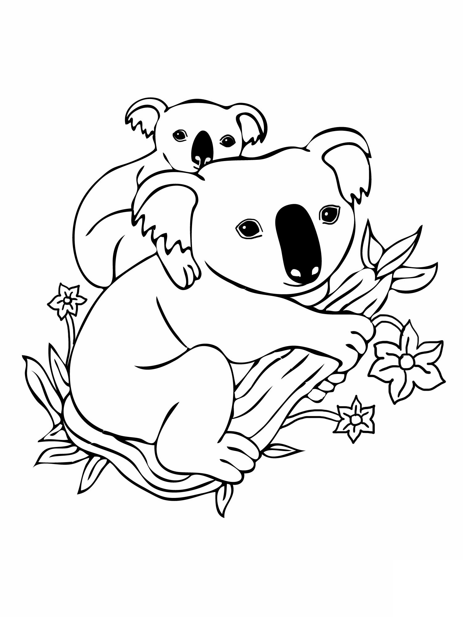 Printable coloring pages koala - Baby And Mother Koala Coloring Pages