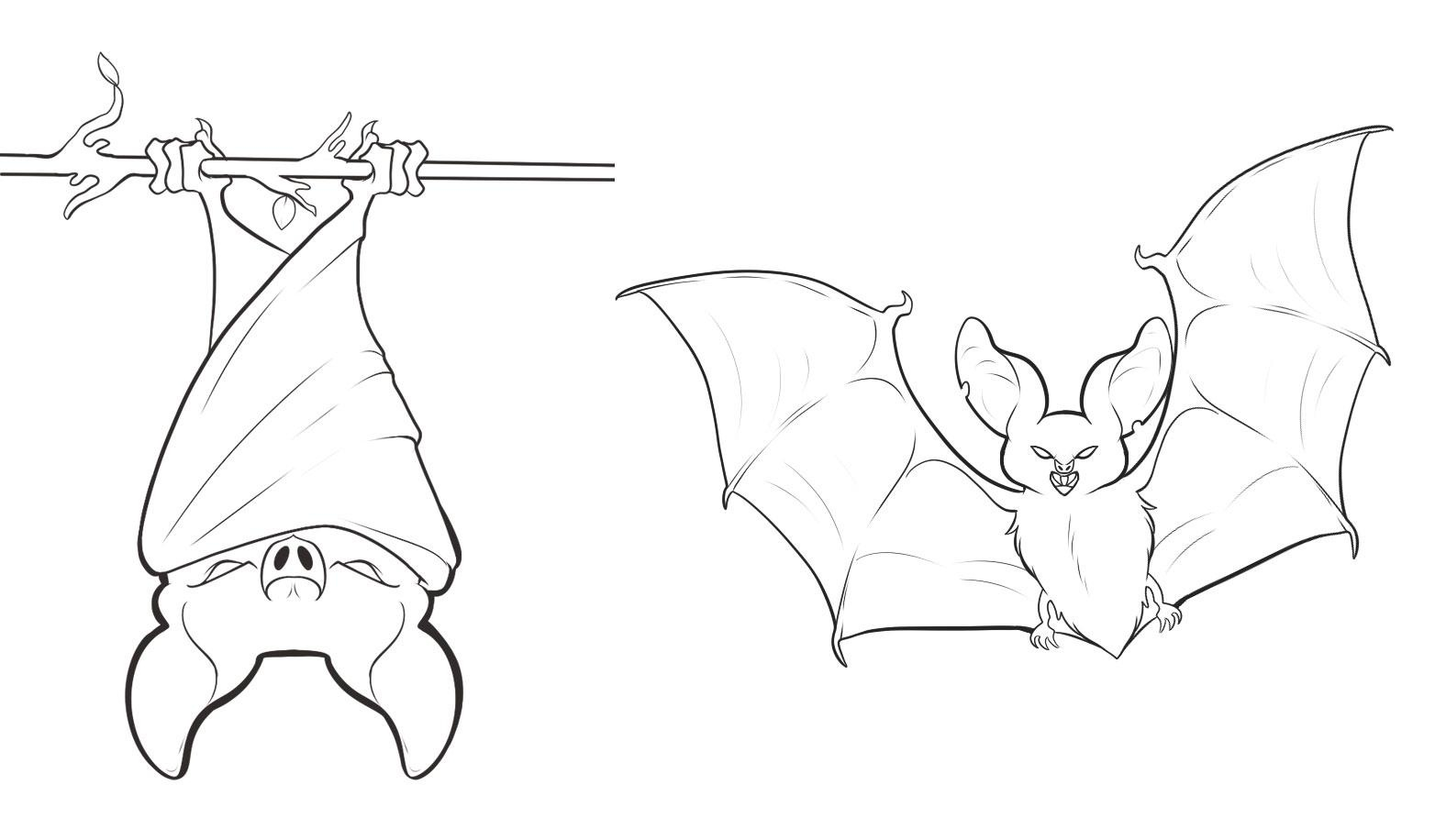 Charmant Bats Coloring Pages Printable