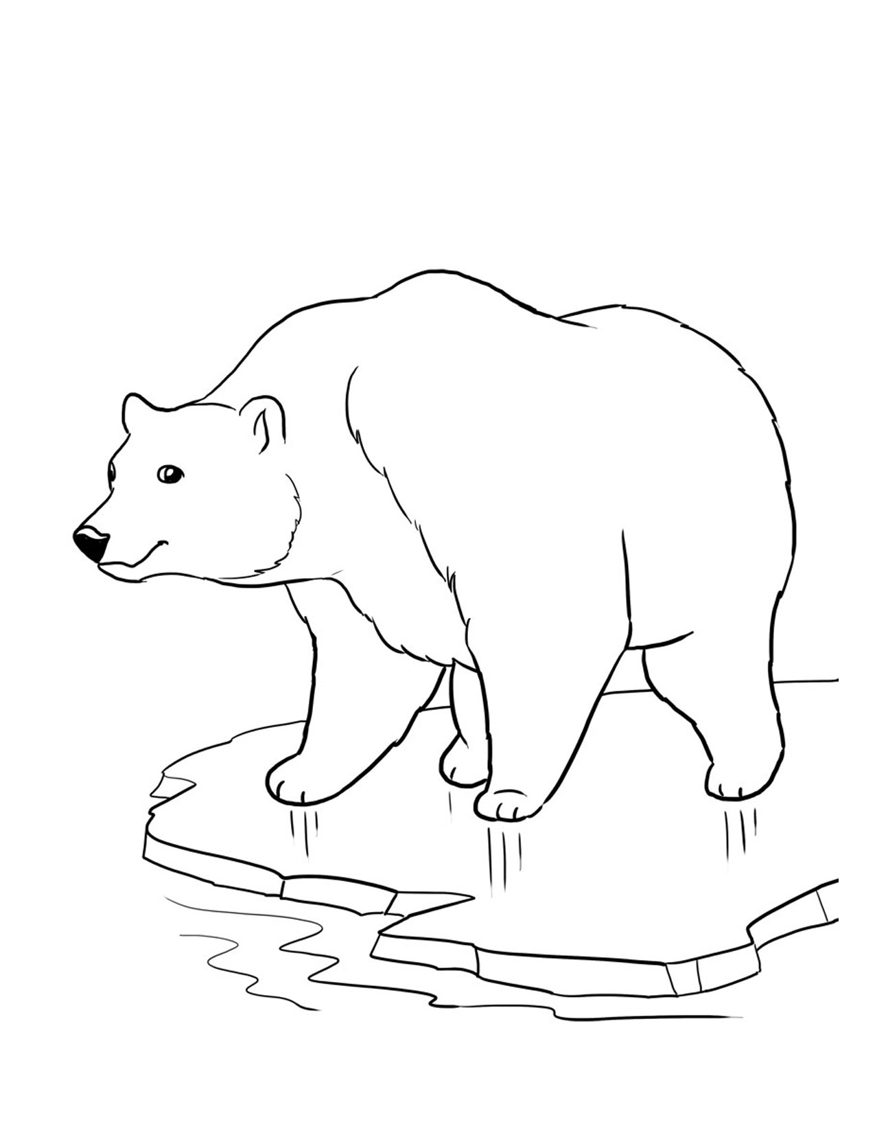 Free printable bear coloring pages for kids for Coloring pages polar bear