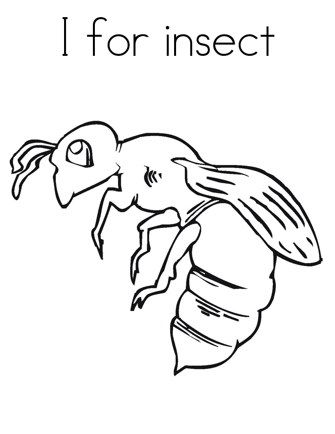 free printable bug coloring pages - photo#33