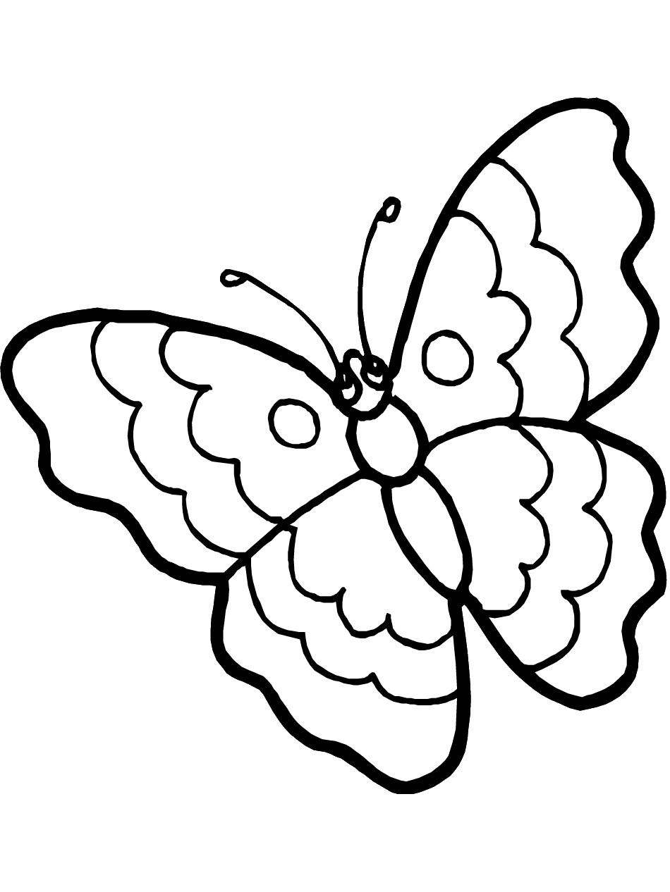 butterfly and flower coloring pages butterfly color page - Coloring Pictures For Kids