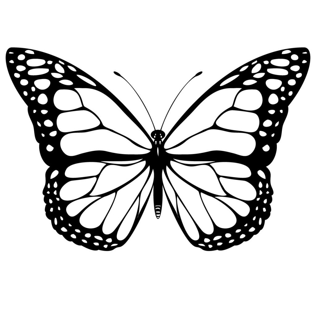 This is a photo of Exceptional Free Printable Butterflies
