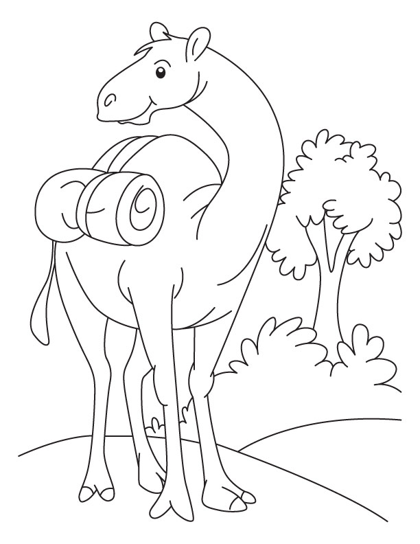 Free Printable Camel Coloring Pages