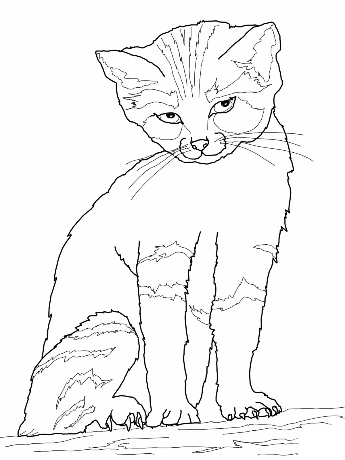 Candid image pertaining to cat coloring pages printable