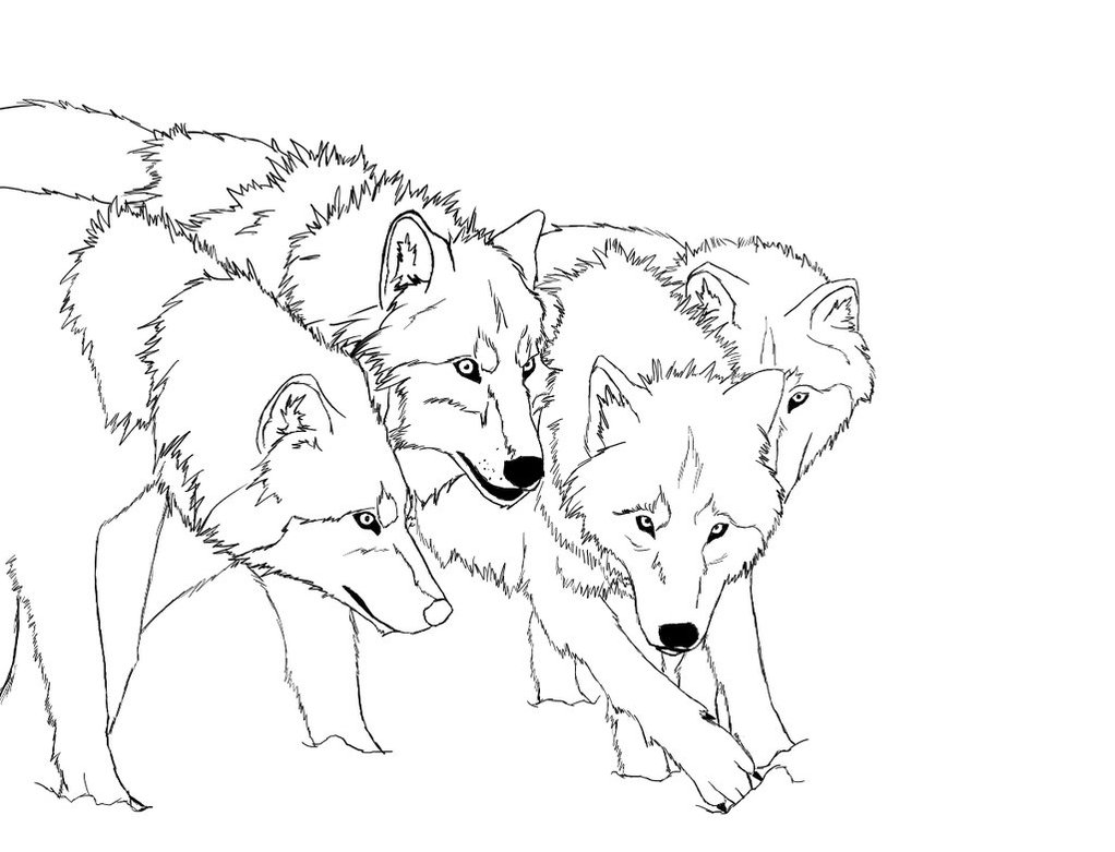 wolves coloring pages - photo#5