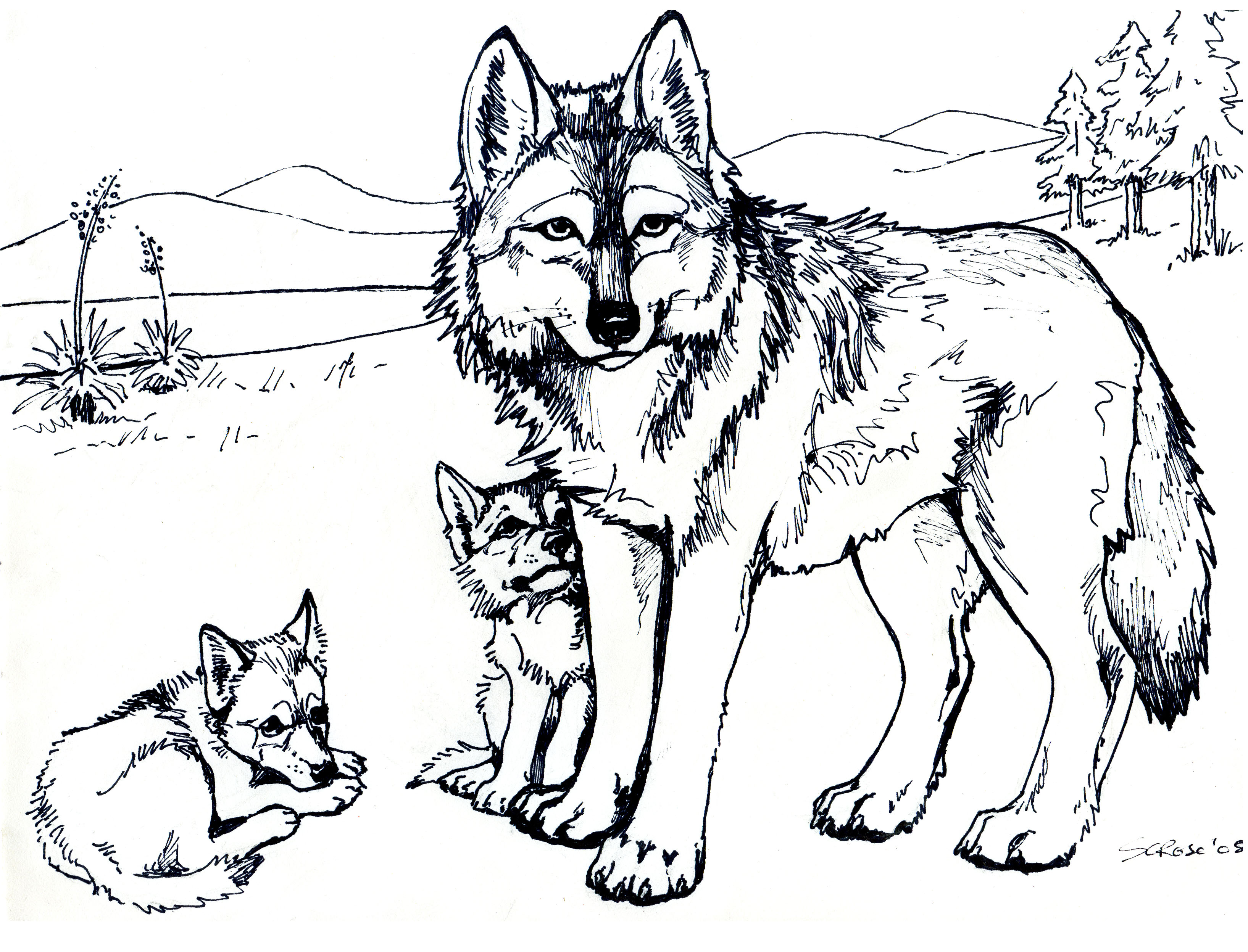 wolves coloring pages - photo#1