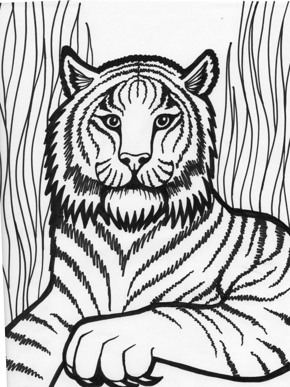 Free coloring pages tiger - Coloring Page Tiger