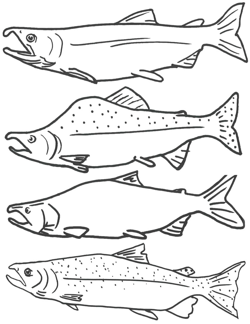 coloring pages of fishing - photo#1