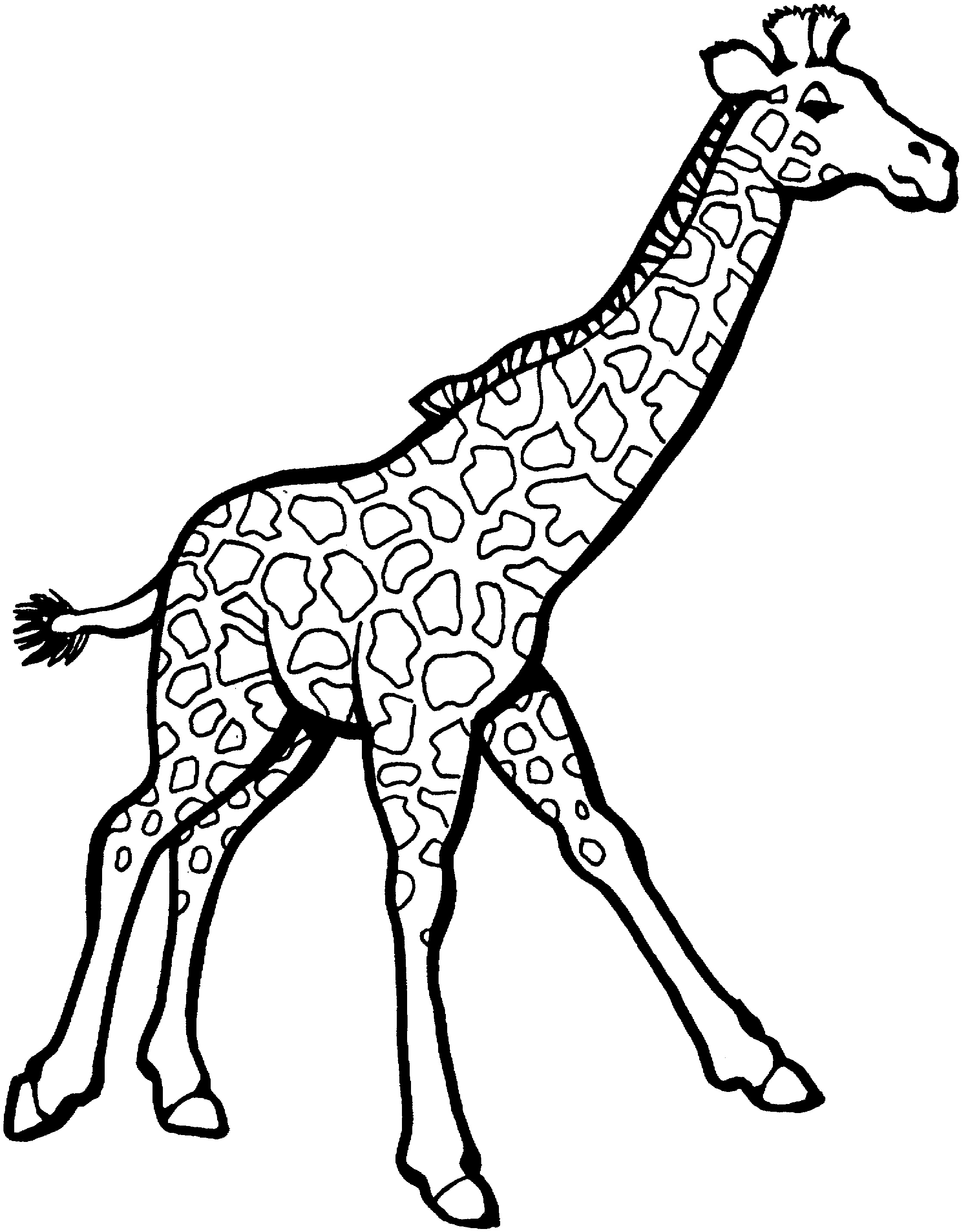 coloring pages easy to print - free printable giraffe coloring pages for kids