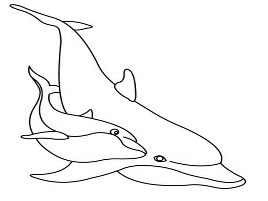 mermaid and dolphin coloring pages - photo#11