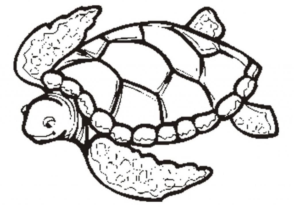 Coloring Pages of Sea Turtles