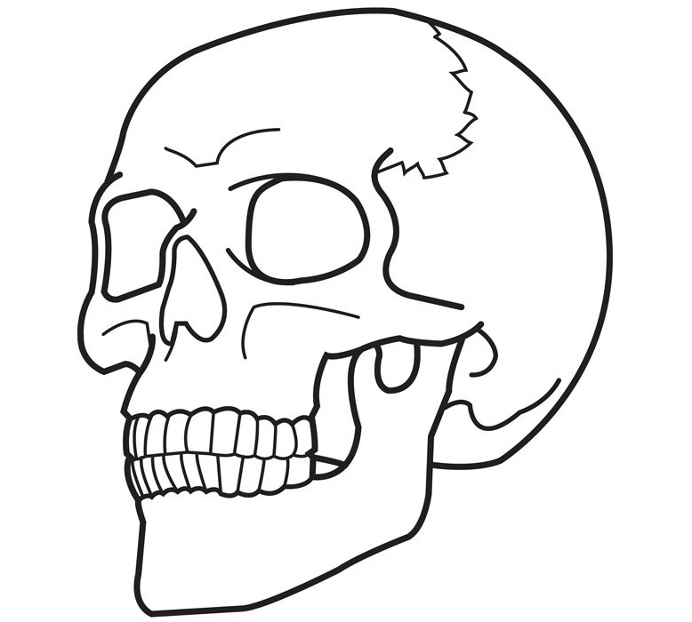 Evil Skull Coloring Pages Free printable skull c