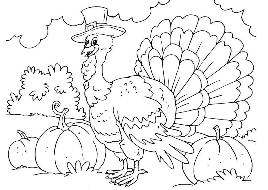 Coloring Pages of Turkeys
