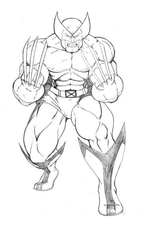 Coloring Pages of Wolverine