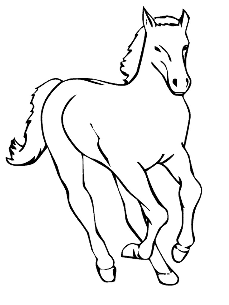 Coloring Pages of a Horse