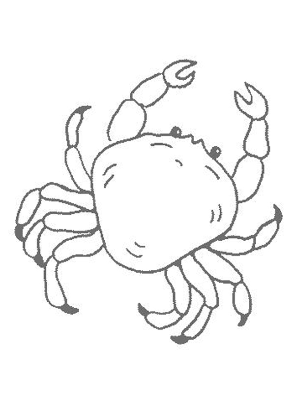 tcrab coloring pages - photo#42