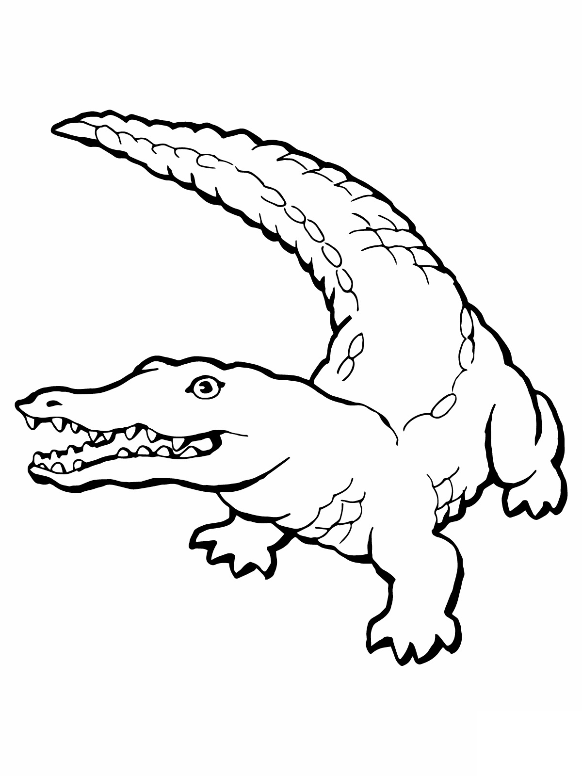 printable coloring pages crocodile - photo #3