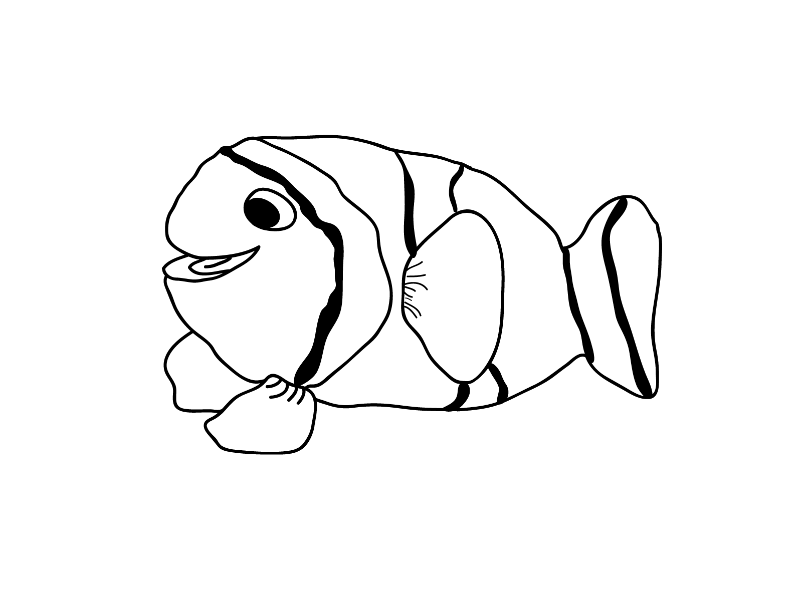 fish coloring pages pbs kids - photo#14