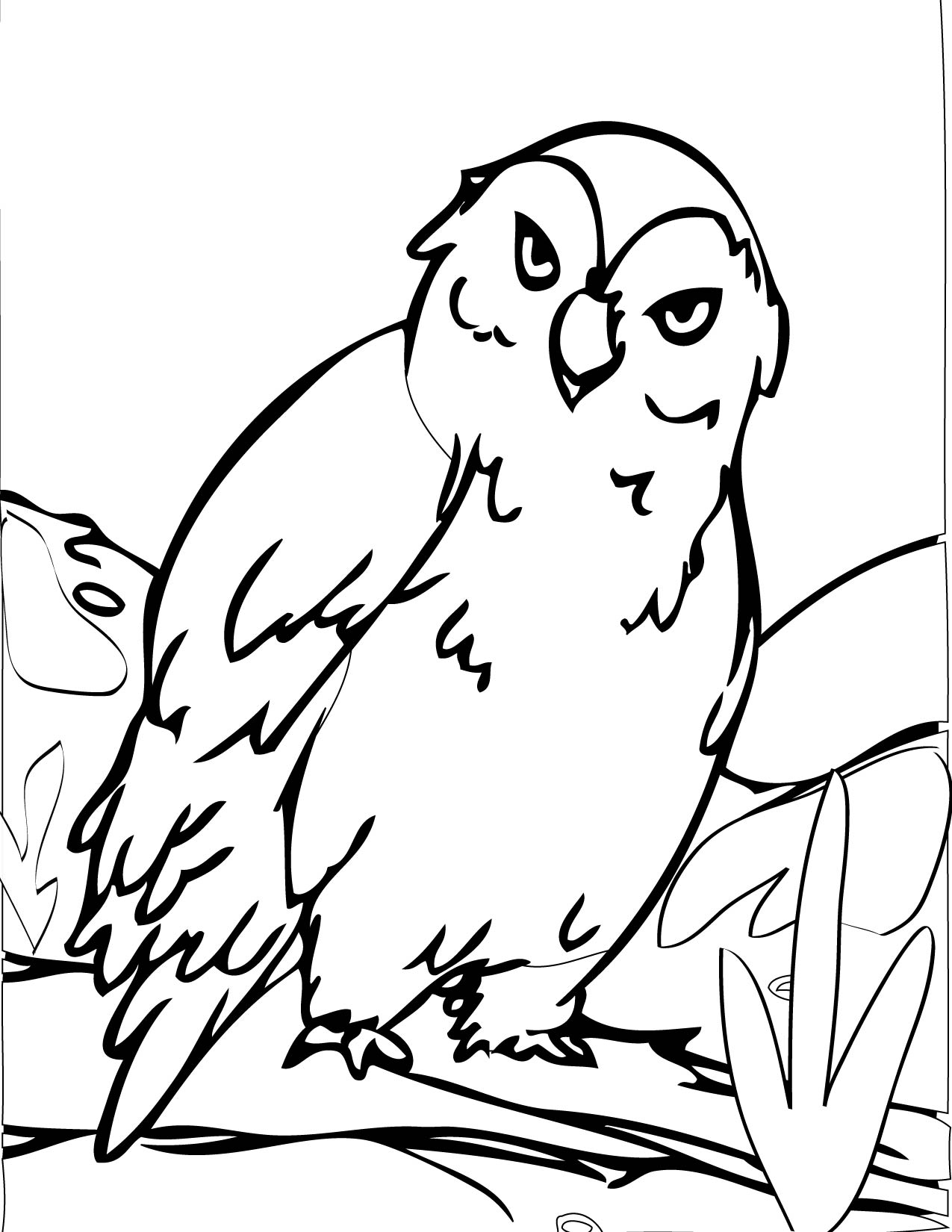 Coloring pitchers of animals - Cute Owl Coloring Pages