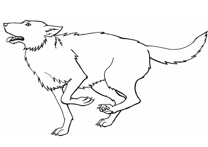 wolves coloring pages - photo#34