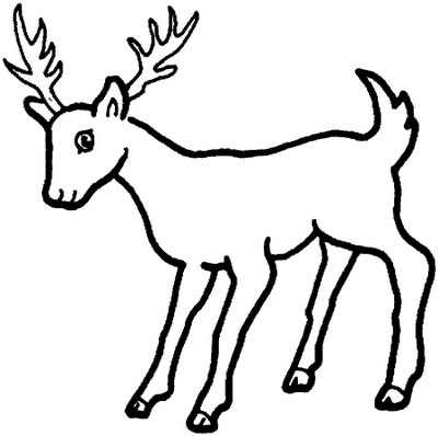 deer coloring pages - Drawing For Children To Colour