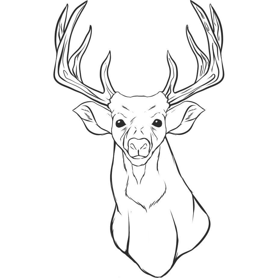 deer head coloring pages