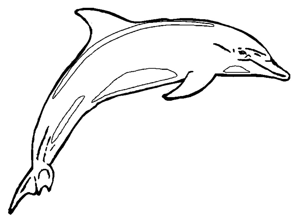 http://www.bestcoloringpagesforkids.com/wp-content/uploads/2013/07/Dolphin-Coloring-Pages-For-Girls.jpg Dolphins