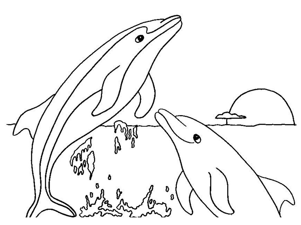 Dolphin Coloring Pages Printable Free