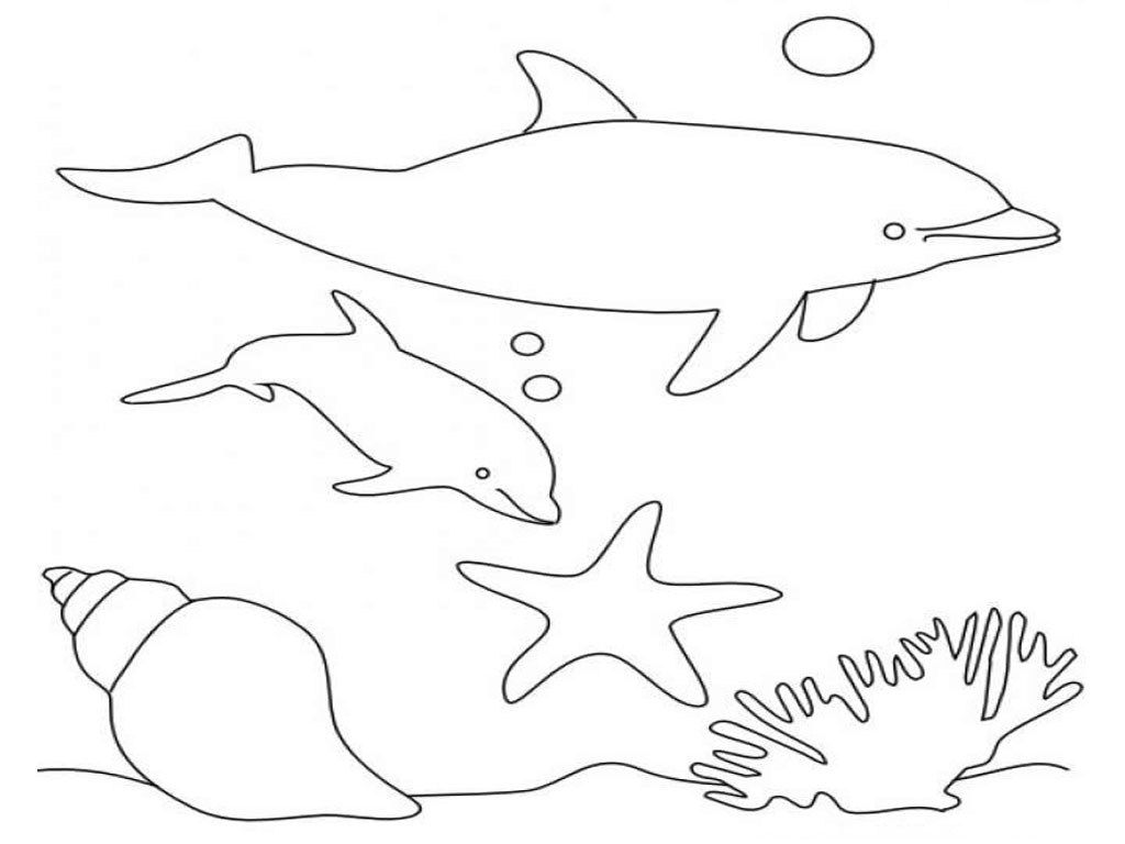 Free printable dolphin coloring pages for kids for Dolphin coloring pages to print out