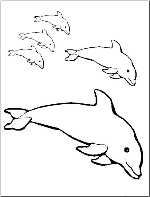 Dolphin Printable Coloring Pages