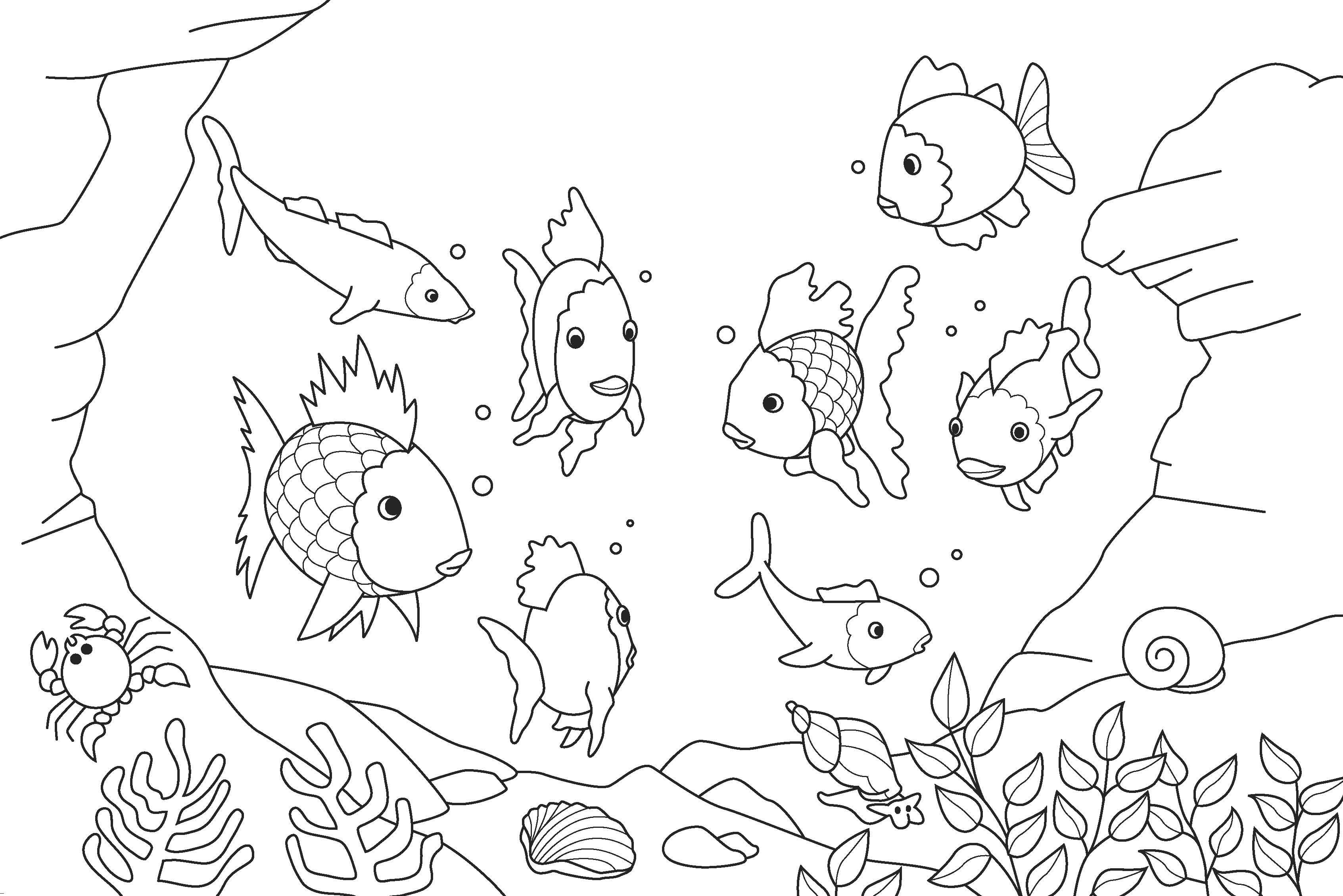 Printable coloring pages rainbow fish - Fish Coloring Pages Kids