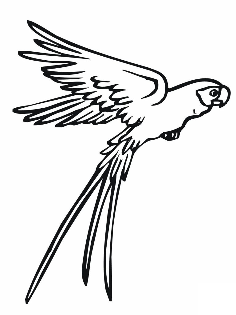 Flying Parrot Coloring Page