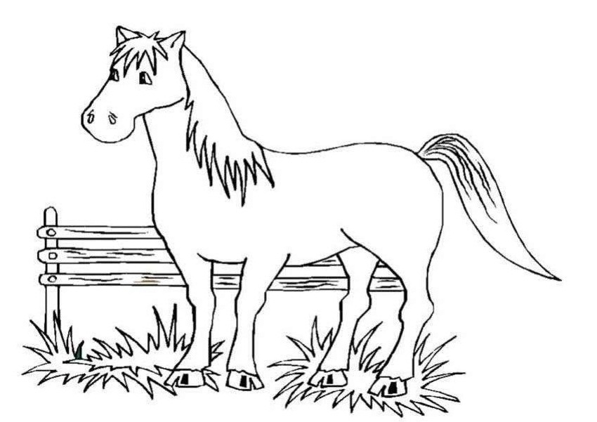 coloring book pages of horses - photo#32