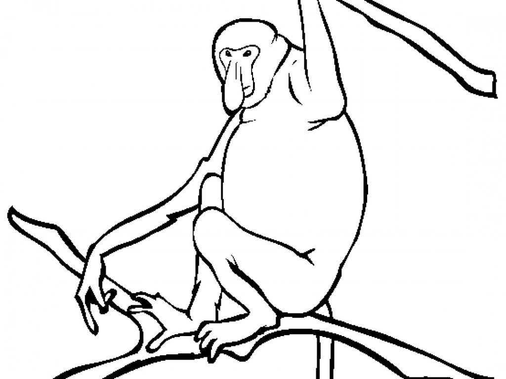 Free Monkey Coloring Pages