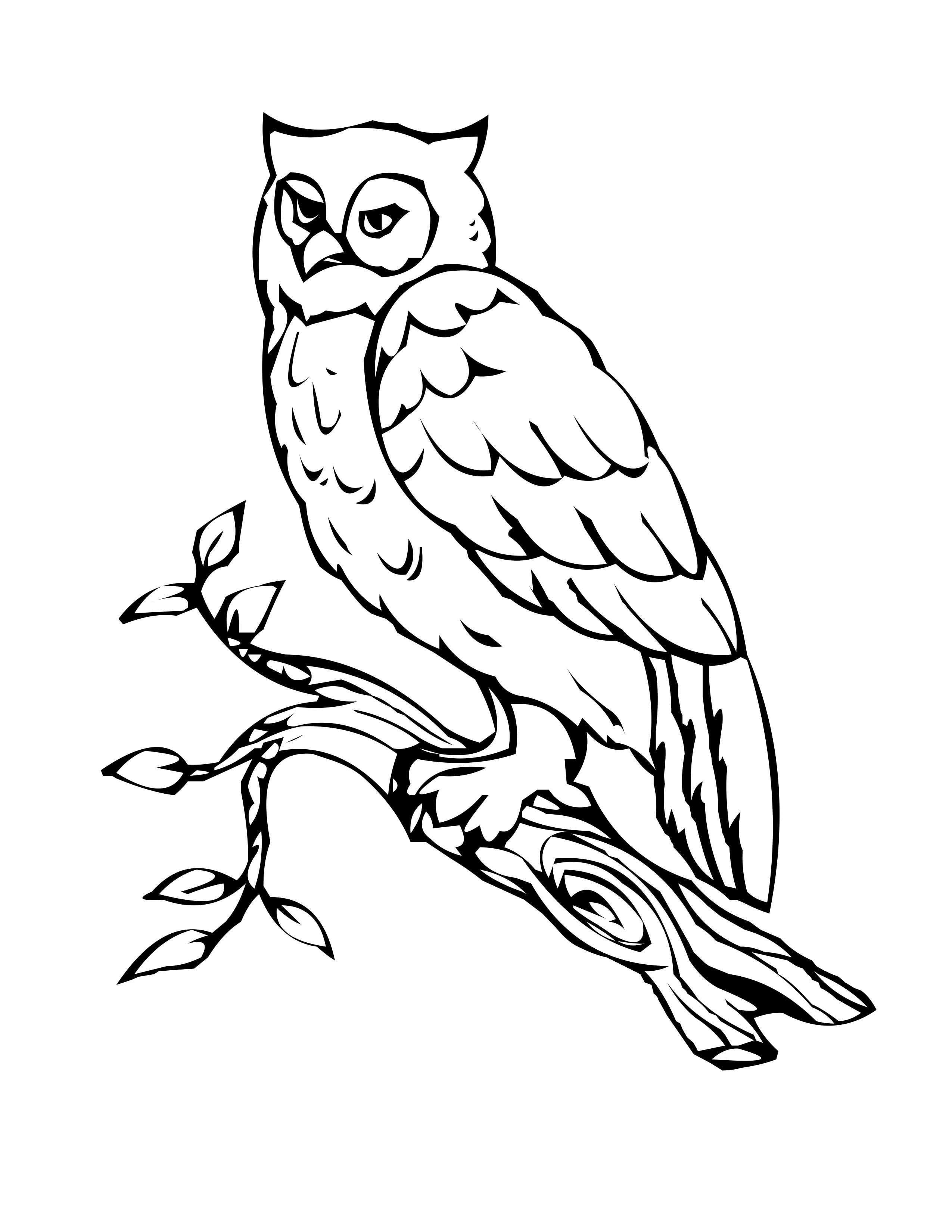 Coloring pages printable owls - Free Printable Owl Coloring Pages