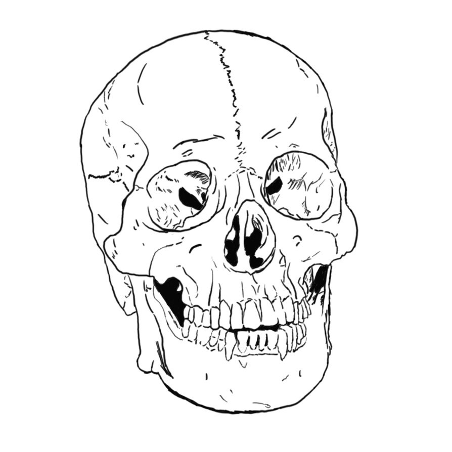 Free Printable Skull Coloring Pages For Kids Skulls Coloring Pages
